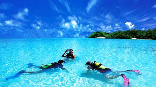 25 Best Places To Go Scuba Diving Marine Ecosystem Manta Ray And Maldives