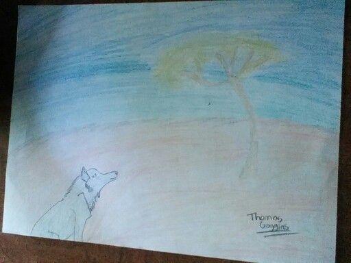 Wolf on a beach