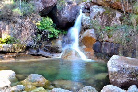 Parks Victoria - Mount Buffalo National Park