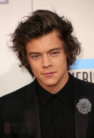 """In 2012, Harry Styles revealed that he has not two, not three, but four nipples! The One Direction frontman even joked, """"I must have been a twin, but the other one went away and left its nipples behind."""""""
