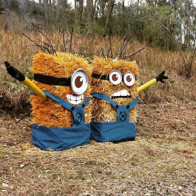 Hay bale minions. Saw this on the side of the road. #minions
