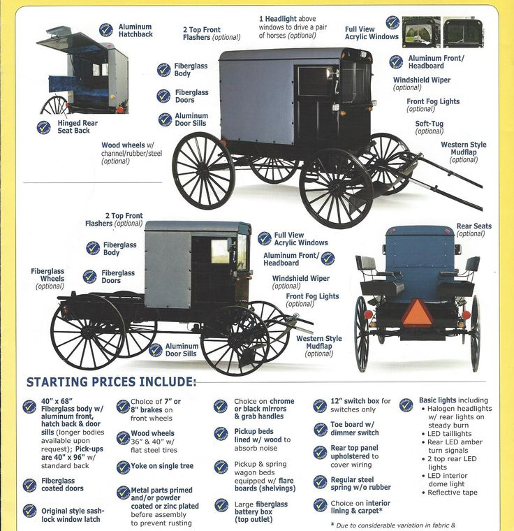 Amish Buggy | Back to Basis - Horse and Buggy - Farm ...