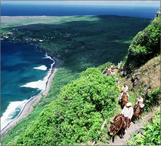 Mule Ride to former Leper Colony in Molokai, Hawaii. I've heard wonderful things about this experience.: Dream Places, Favorite Places, Faraway Places, Molokai Mule, Molokai Hawaii, Places I D, Hawaiian Islands The, Hawaii Molokai, Molokai S Mule