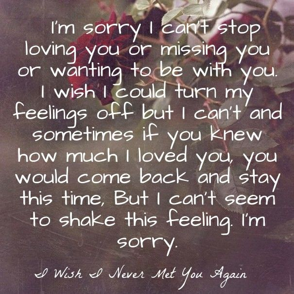 Pin By Melissa Huckleberry On Sweet Baby Meeting You Quotes Apologizing Quotes Lost Love Quotes