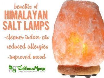 Himalayan Salt Lamp Benefits for Clean Air and Reduced Allergies 365x274 Himalayan Salt Lamp Benefits