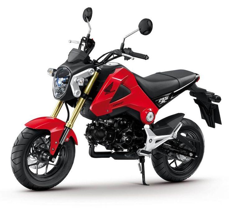 HondaMSX125 0008 2013 Honda Grom