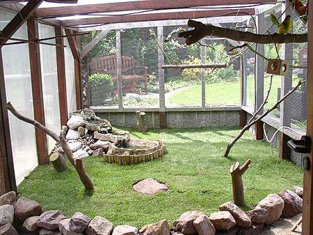 huge bird aviary - Wellivilla- Vogelvoliere