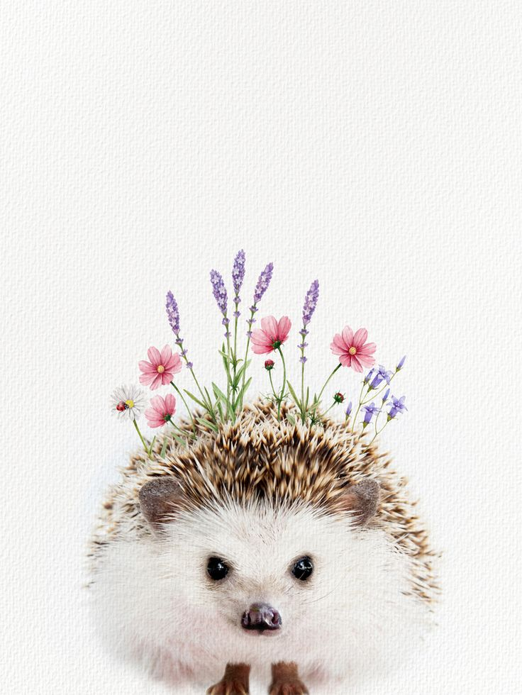 Hedgehog with flower crown mini art print by amy peterson