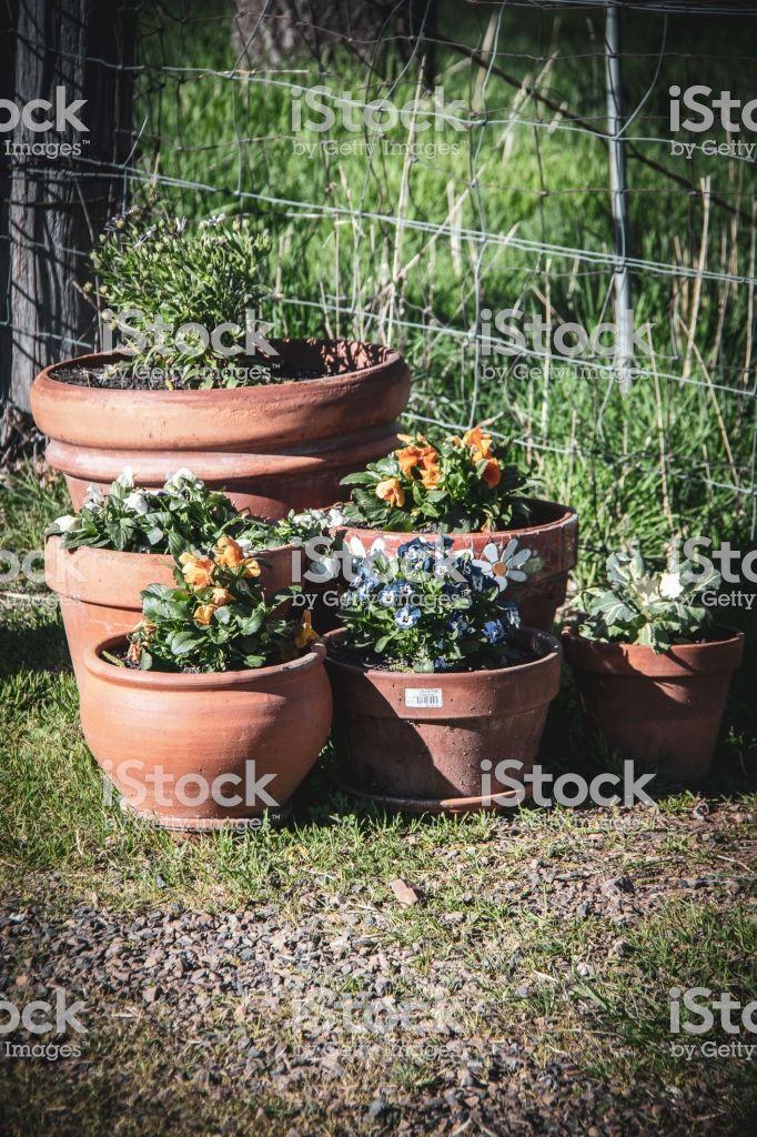 Old Vintage Rustic Farm Garden Agriculture Photos Garden Terracotta Pots