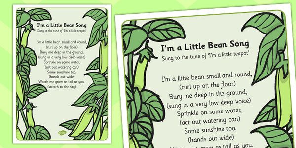 I'm a Little Bean Song Lyric Sheet (With Actions) - song