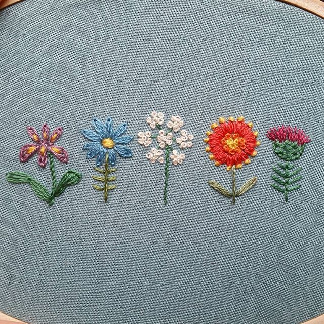 From left to right: iris, aster, Queen Anne's lace, firewheel, and bull thistle.