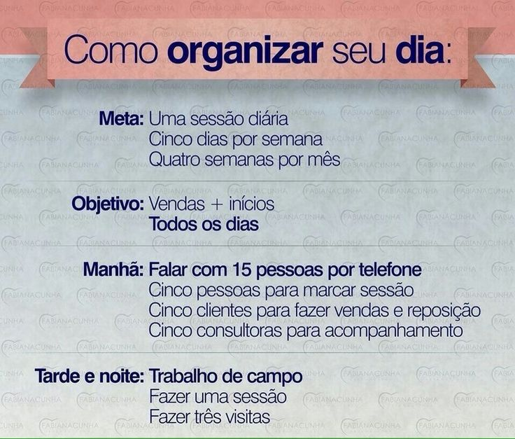 como organizar seu dia