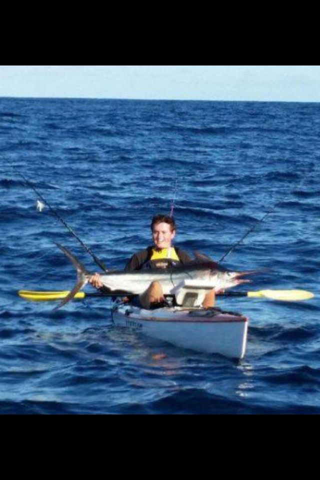 88 best marlin tuna everything gamefishing images on for Tuna fishing games
