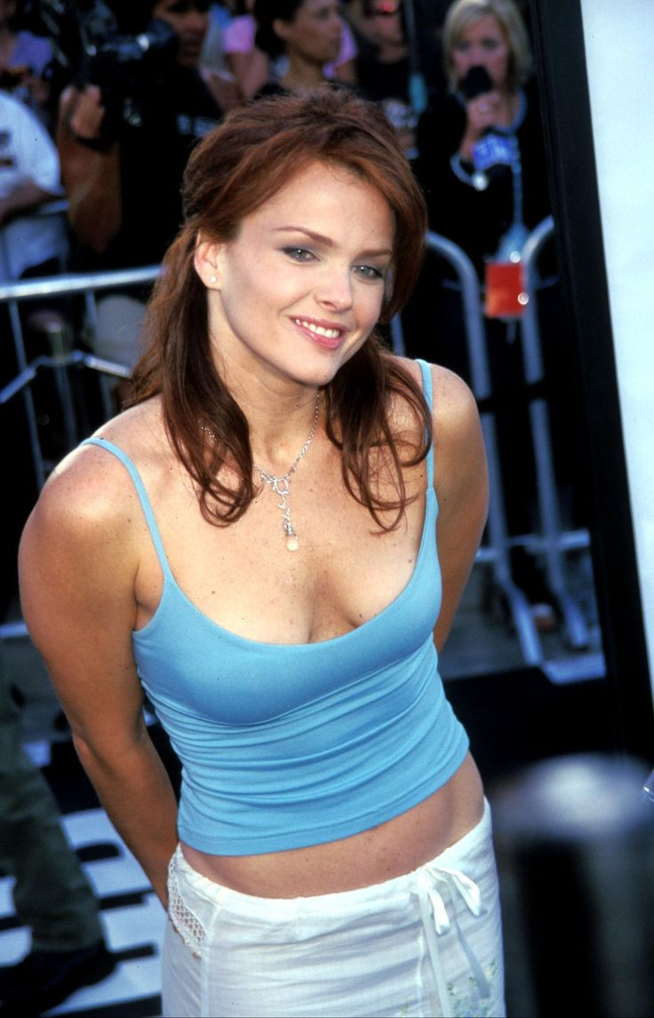 31 Best Images About Dinameyer On Pinterest