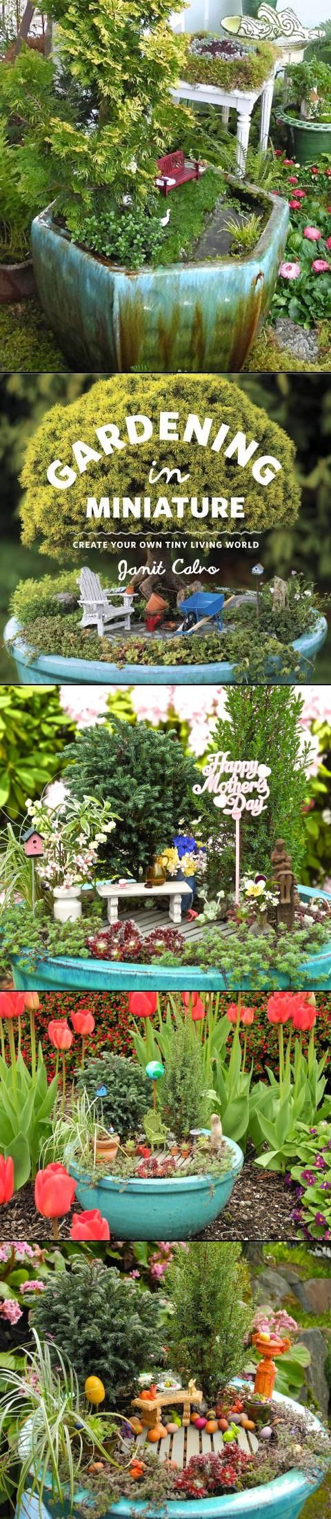 holiday mini fairy garden ideas.  I like the one with water incorporated.