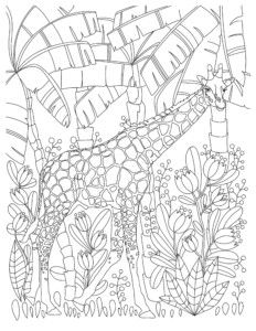 Free To Download Giraffe Adult Coloring Book Page