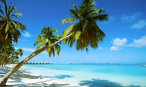 ✈Memories Grand Bahama Stay w/ Air, Incl. Taxes & Fees. Price/Person Based on Double Occupancy (Buy 1/Adult Traveler)
