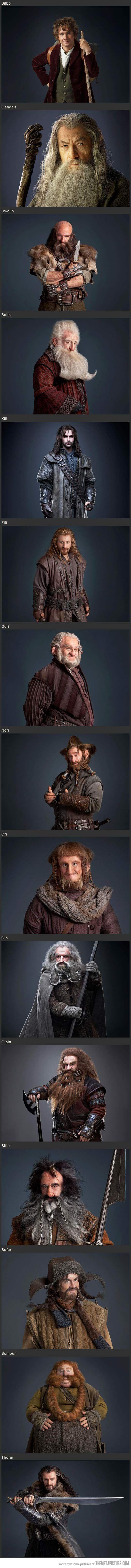 Bilbo, Gandalf, Dwalin, Balin, Kili, Fili, Dori, Nori, Ori, Oin, Gloin, Bifur, Bofor, Bombur, & Thorin.