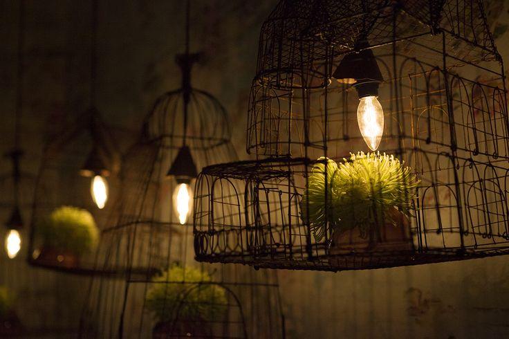 Lighting. Lamps Stunning wire cage pendant lights beautifulroom.com.au facebook.com/beautifulroom