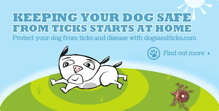 This website is a great, easy to understand guide on how to keep your dog safe from ticks.