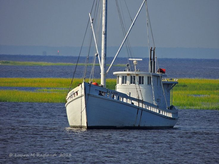 Chesapeake Bay Buy Boat Summer Water Photo By
