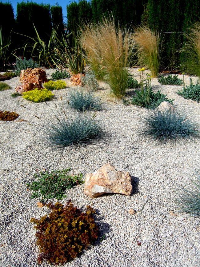 Mediterrane Gartenlandschaft-Ziergras anbauen Steingarten Ideen - kleiner steingarten bilder