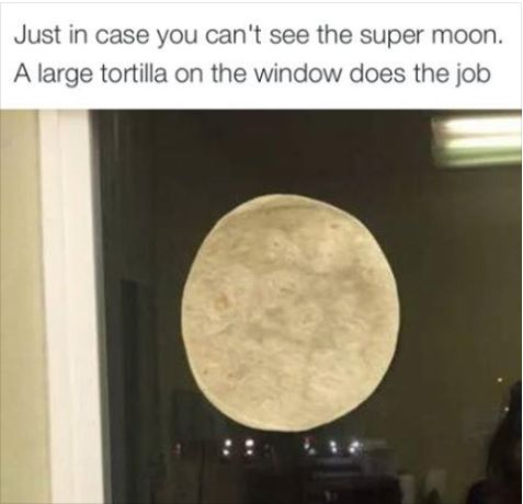 Just in case you missed the super moon, a large tortilla on the window does the job.