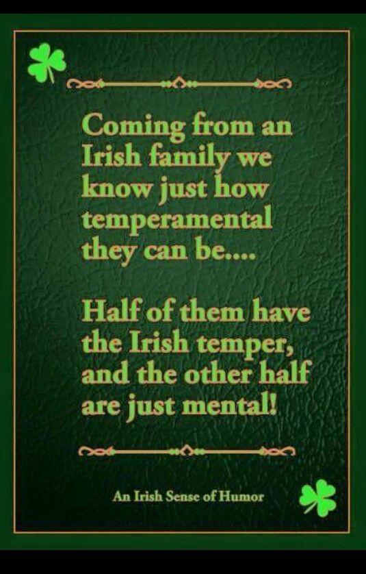 I'm one of 8..I have the irish temper! | Irish | Pinterest | Irish, Irish jokes and Irish men