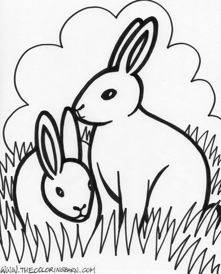 printable colouring pictures of farm animals 163 best big kidscoloring sheets images on pinterest