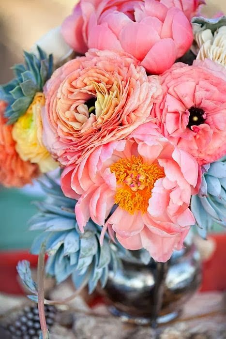 Peonies and ranunculus with succulents