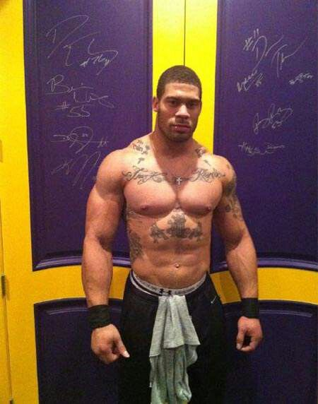 1000 Images About Nfl Laron Landry On Pinterest Jets