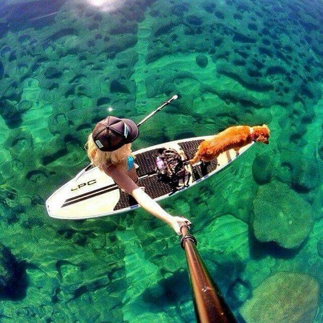 Like the paddle boards on the lake in nh! #Selfie, #SelfieStick, #Wristband, #Wrappable, #Journey, #InTheMoment, #Foldable, #ThePopStick