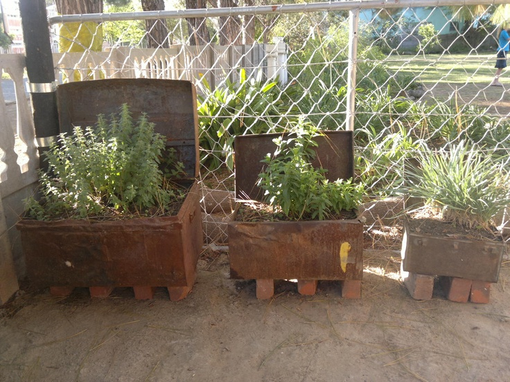 Old Army trunks turned Herb garden :)