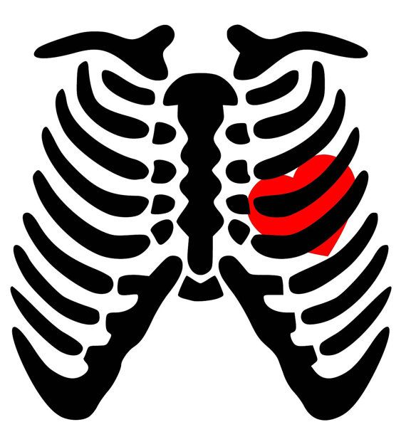 Skeleton Rib Cage Heart Svg Pdf Png Eps Dxf Welcome