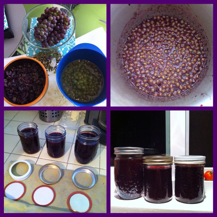 Summer 2014 Neighbour had too many grapes, so an attempt at Grape Jelly! Turned out delish! Hoping for another bumper crop next year!