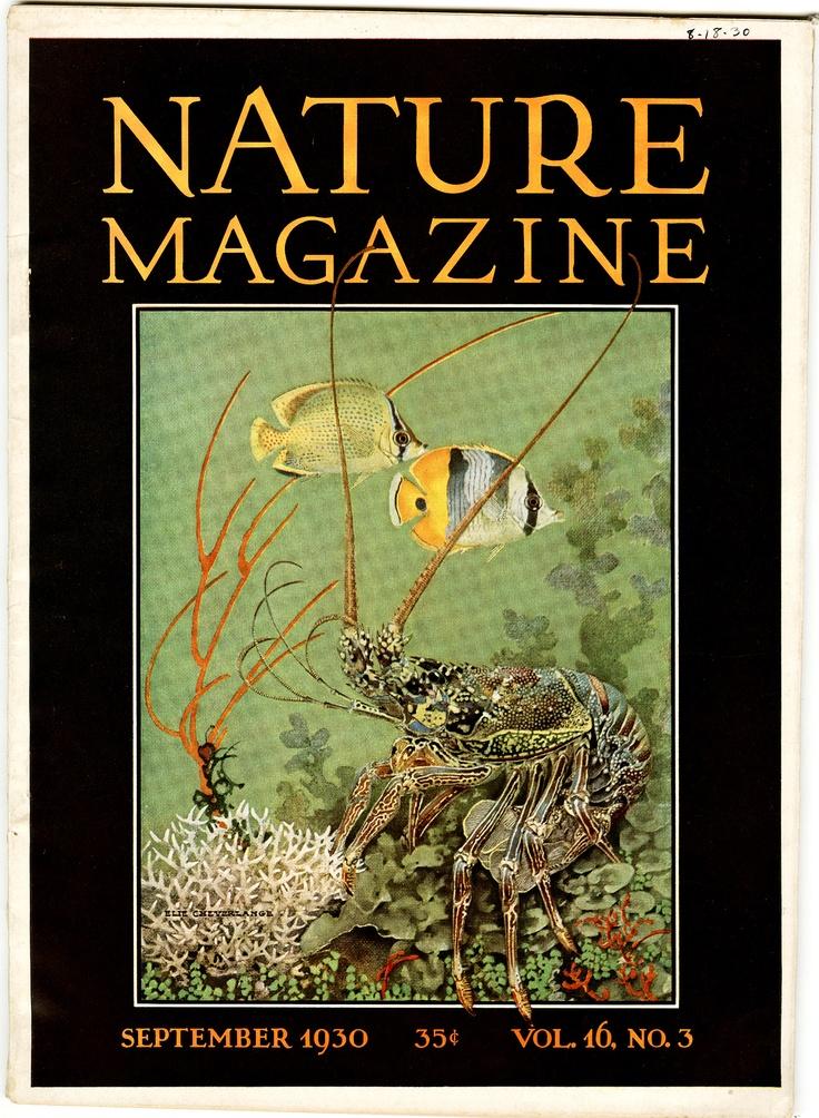 nature magazine magazines covers 1930 advertisement advertisements uploaded user elie undersea advintage plus discover