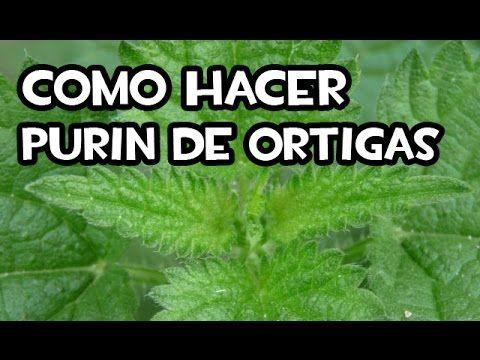 Como hacer purin de ortigas - La Huerta de Iván - Siembra tus alimentos en el Huerto y Jardín.