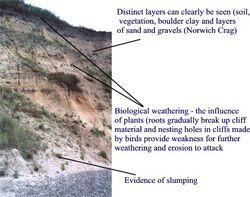 Sub-aerial processes, Geobytes, St Ivo