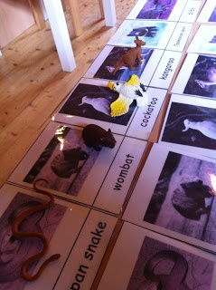 My Montessori Preschool: An Australian Ballad....