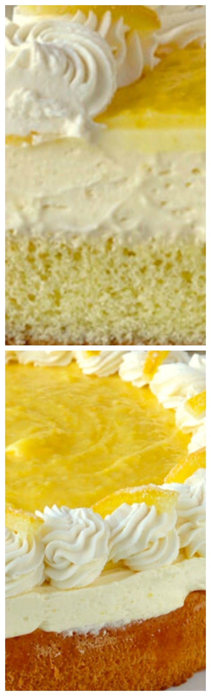 Lemon Mousse Cake ~ Lemon curd and whipped cream sits atop a light as air sponge cake and is then topped with more lemon curd, whipped cream and candied lemon peel.