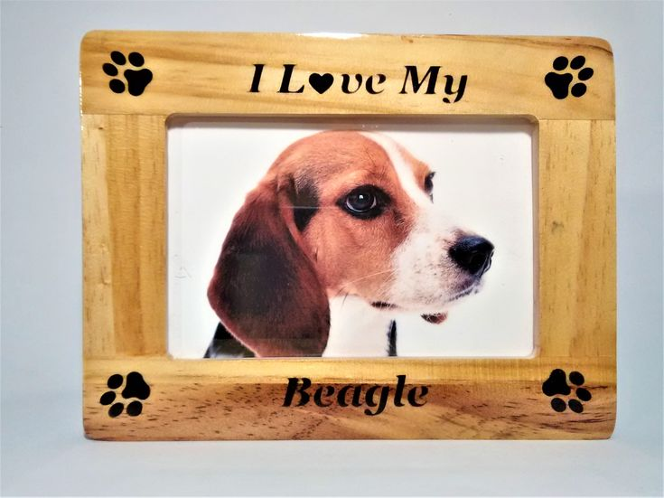 18 best Pets Frames images on Pinterest