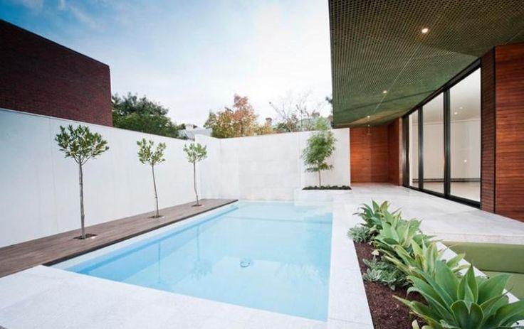 jardin avec piscine de forme rectangulaire déco extérieure avec arbres