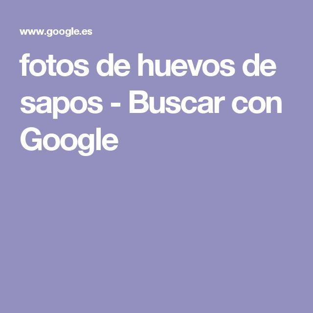 fotos de huevos de sapos - Buscar con Google