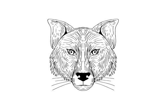 Fox Head Front Drawing by patrimonio on @creativemarket. Illustration of a Fox Head Front view done in hand sketch Drawing style. #illustration #FoxHead