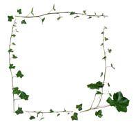 Lenagold - Клипарт - Рамки с плодами и листьями - 3
