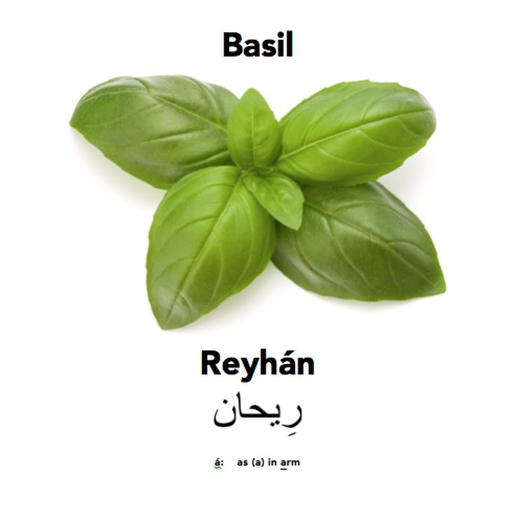 Basilicious at Englisi Farsi