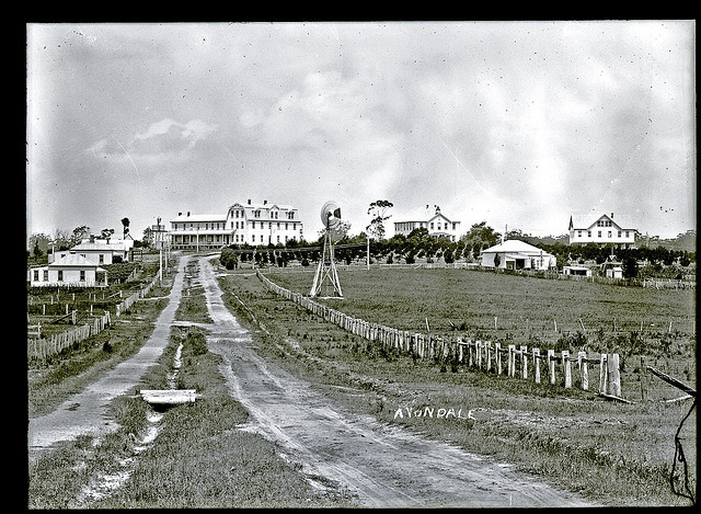 Approach to Avondale College, Cooranbong, NSW, 5 January 1910 by Cultural Collections, University of Newcastle, via Flickr