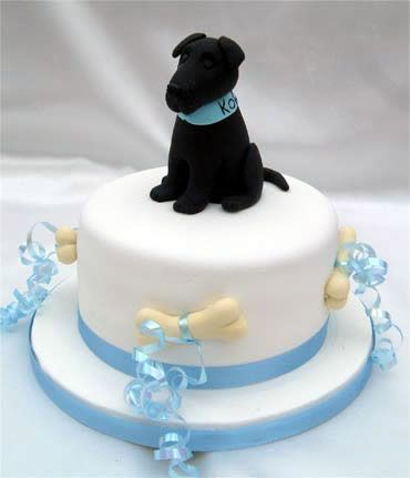 17 Best images about Dog cakes on Pinterest Birthday ...