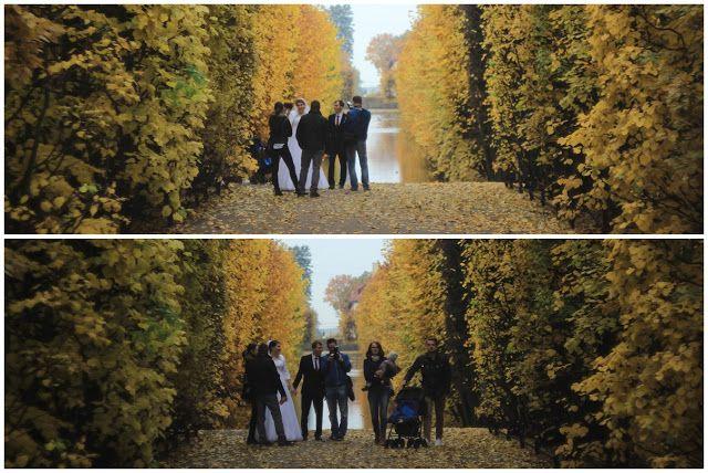 ...  świat wokół mnie   ...: ... jesienny Park Oliwski ...