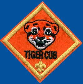 31 Ways Tiger Cubs Can Earn Cub Scout Awards At Walt